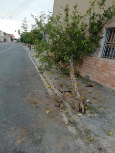 Vuelca un coche en una vía de Almoradí 7