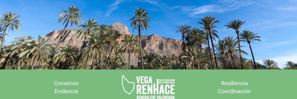 La ciudadanía puede votar presencialmente los proyectos del Plan Vega Renhace este jueves 6