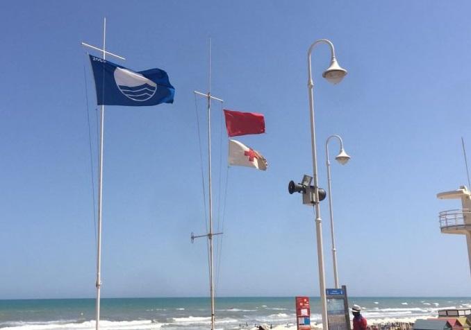 Primera denuncia de la temporada por bañarse con bandera roja en Guardamar 6