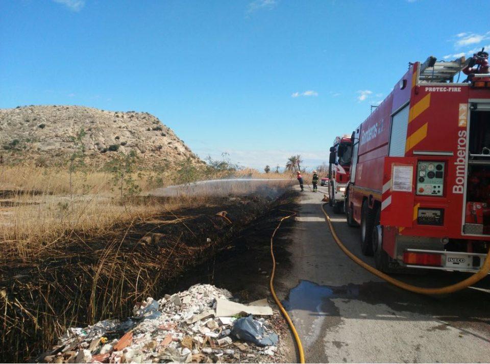 Un incendio calcina 30.000 metros de cañas en Granja de Rocamora 6