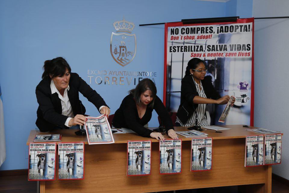 Torrevieja apuesta por la castración y adopción de perros y gatos 6