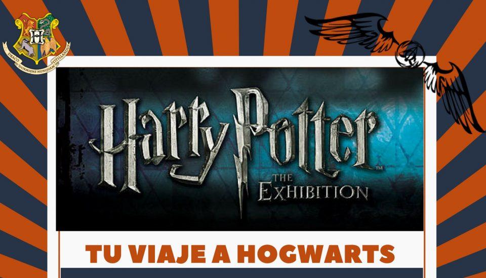 Torrevieja y Pilar de la Horadada te llevan a la exposición de Harry Potter en Madrid 6