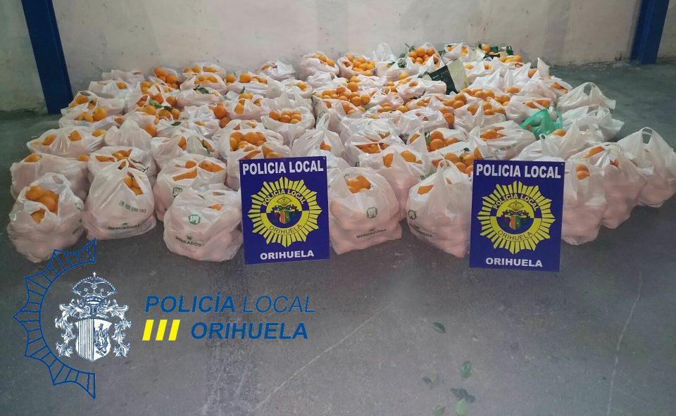 Detenidas siete personas cuando robaban 1.200 kilos de naranjas 6