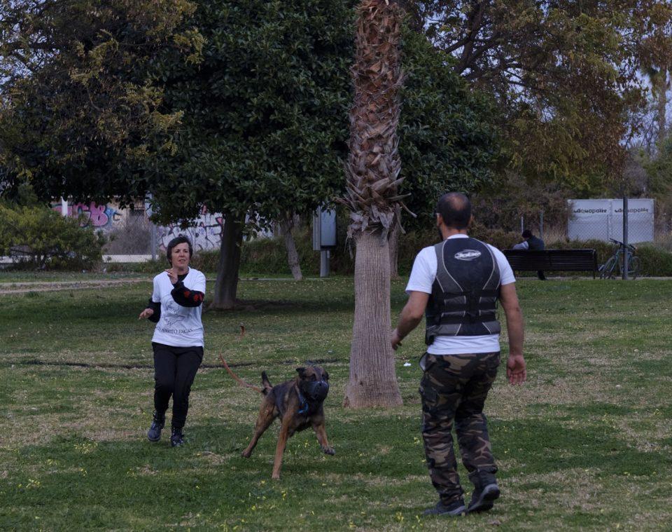 Perros para terapias en mujeres víctimas de violencia de género 6