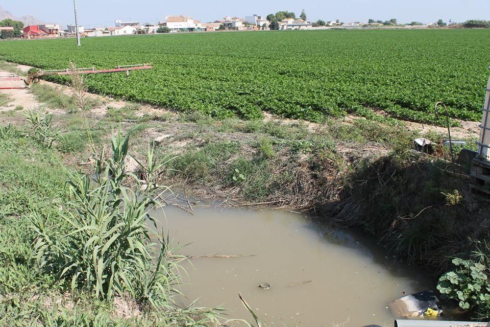 Agricultura somete a información pública una cuarta prórroga del RD por la situación de sequía 6