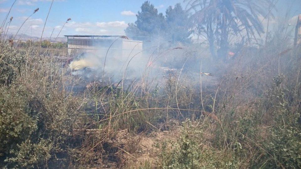Un incendio calcina 10.000 m2 de la huerta de Callosa 6