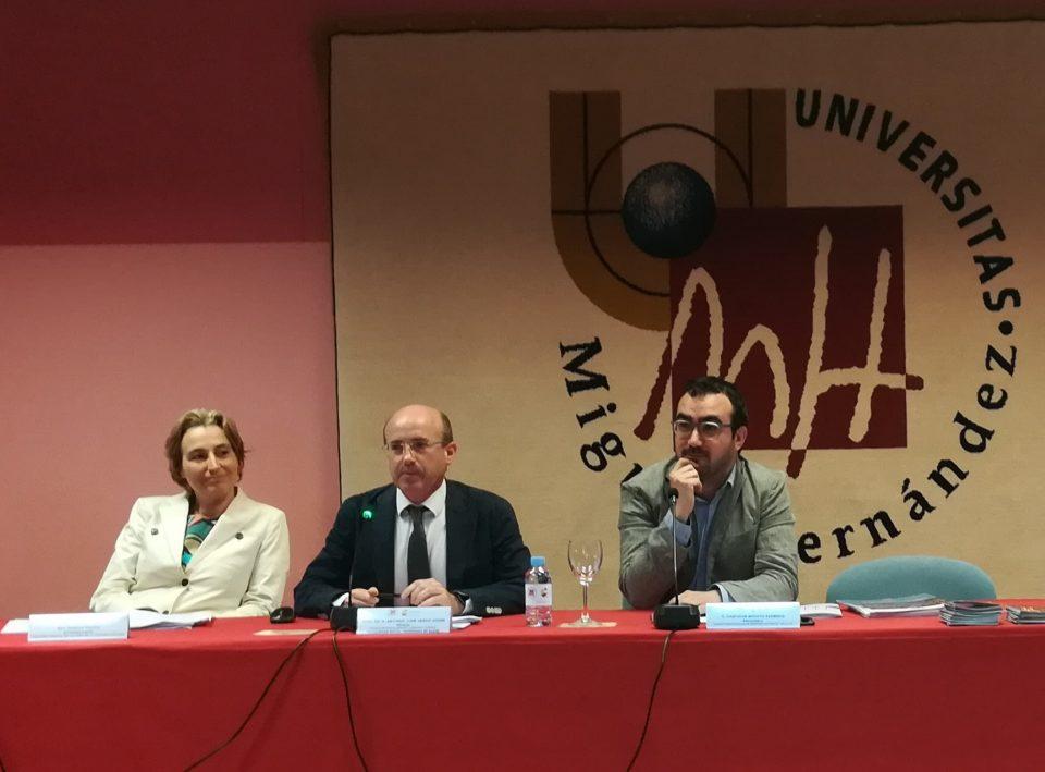 La UMH presenta la Cátedra Iberoamericana Roemmers de Industrias Culturales y Creativas 6
