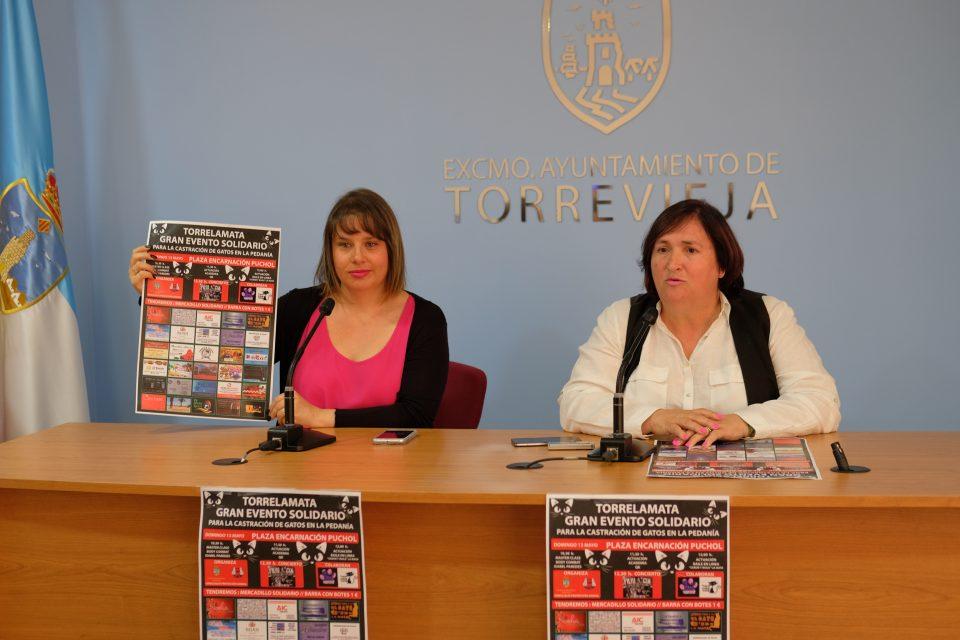 Torrevieja albergará un acto solidario para la castración de gatos 6