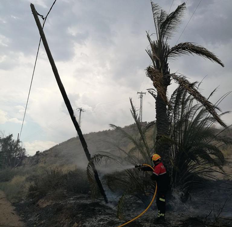Un incendio arrasa 4.000 m2 de terreno en San Isidro 6