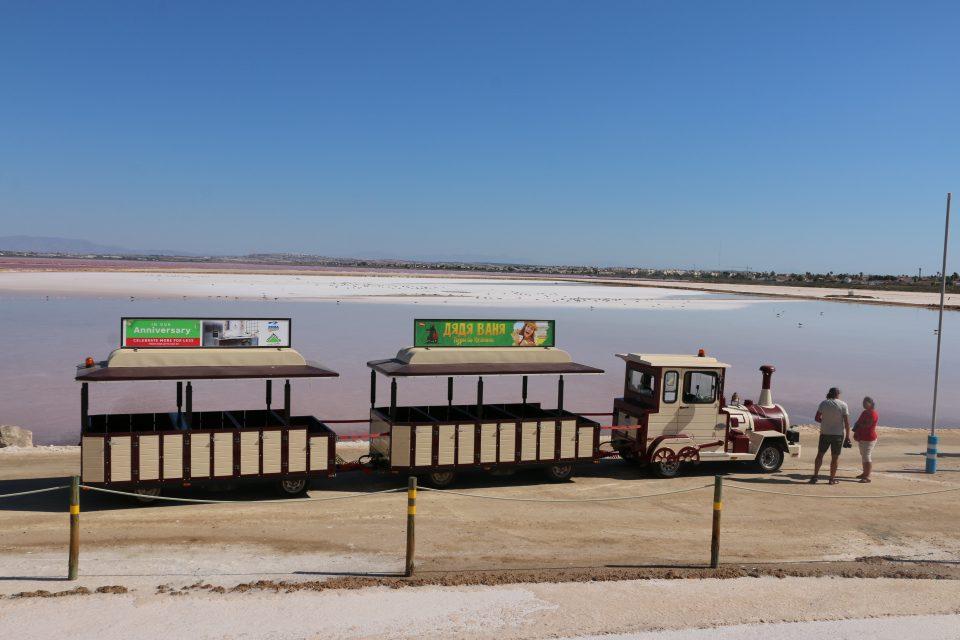 Comienzan las excursiones a las Salinas de Torrevieja 6