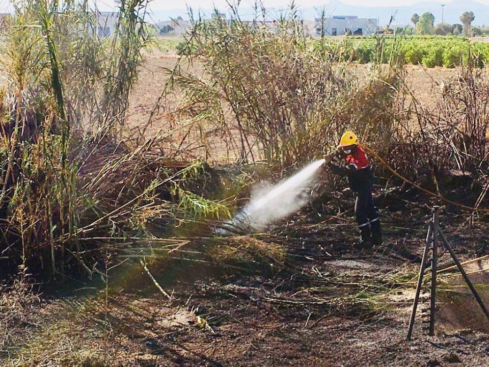 Un incendio calcina una zona de matorral junto a la AP-7 en Rojales 6