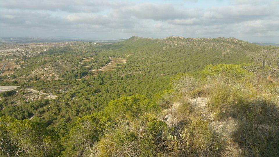 El Consell declara Paisaje Protegido a Sierra Escalona y Dehesa de Campoamor 6