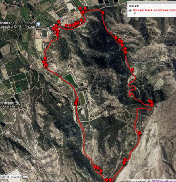 Benejúzar regula el uso de los montes y espacios forestales 6
