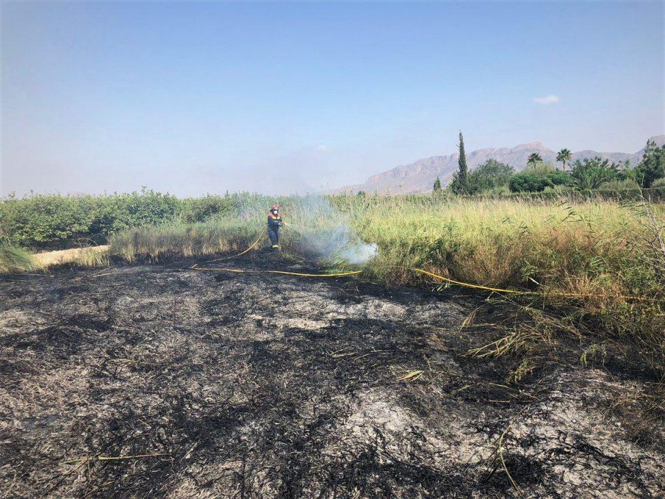 Un incendio calcina 2.000 metros cuadrados de matorral en Orihuela 6