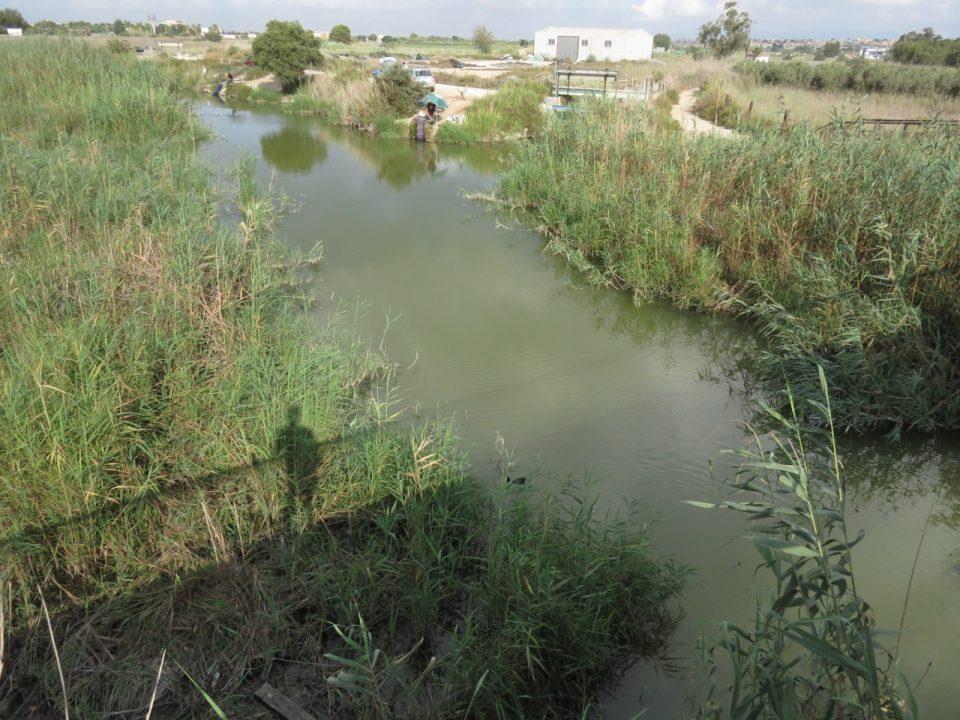 La CHS tarda más de dos años en limpiar de basura el cauce viejo del río en su desembocadura 6