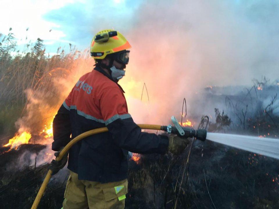 El fuego calcina 13.000 metros cuadrados del Parque Natural de La Mata 6