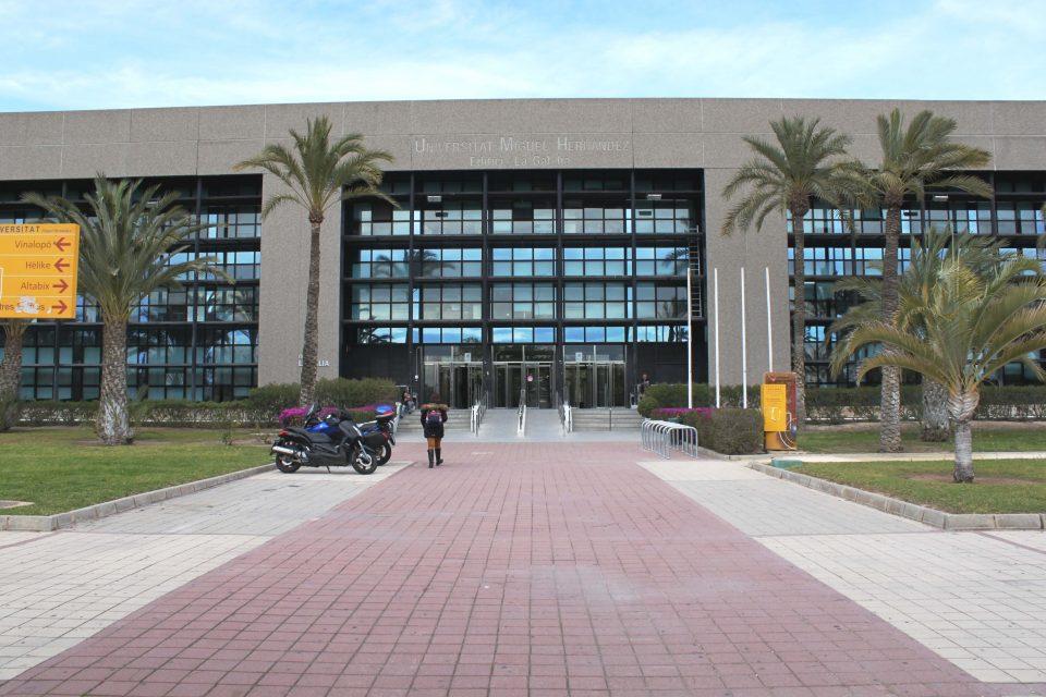 La UMH prepara 40 cursos para este otoño-invierno 6