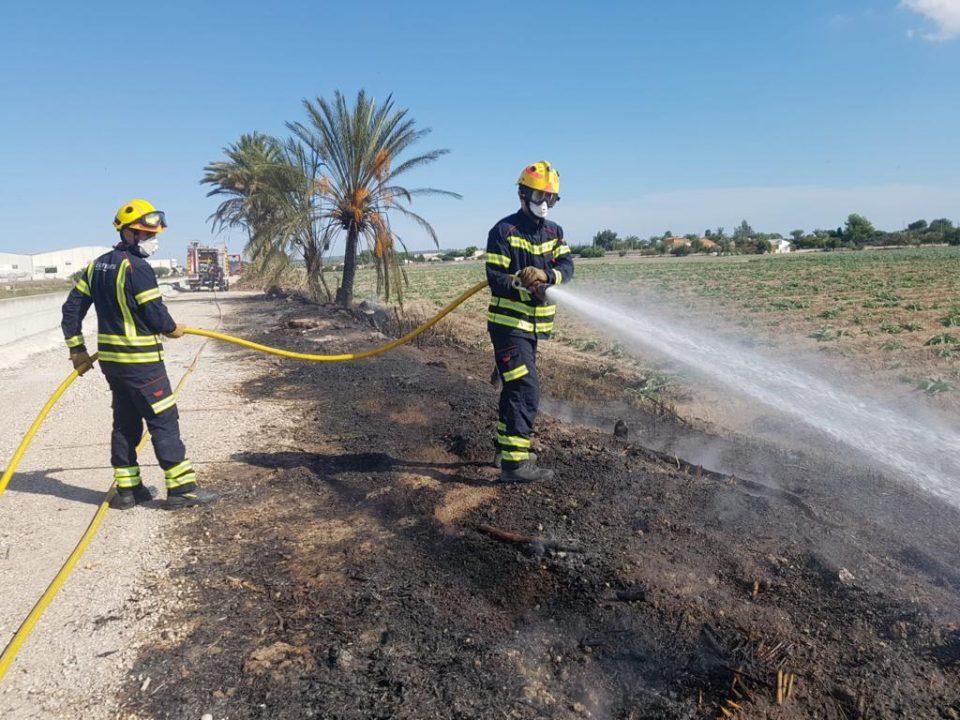 Un incendio afecta a una zona de palmeras en Dolores 6