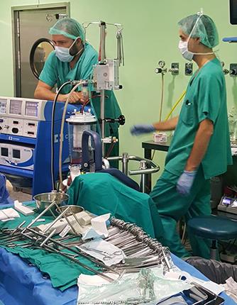 La Guardia Civil compra hielo para mantener varios órganos hasta su trasplante 6