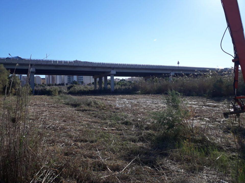 """La CHS limpia """"por fin"""" algunos tramos del cauce del río Segura 6"""