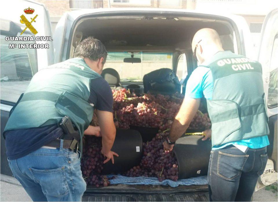 Detienen a una familia por robar fruta en La Murada y Albatera 6