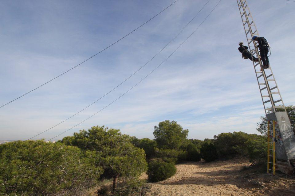 Retiran 3.500 metros de cable de media tensión en zona dunar de Guardamar 6