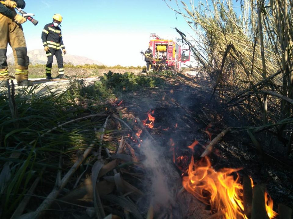 Los bomberos realizan varias intervenciones en la Vega Baja 6