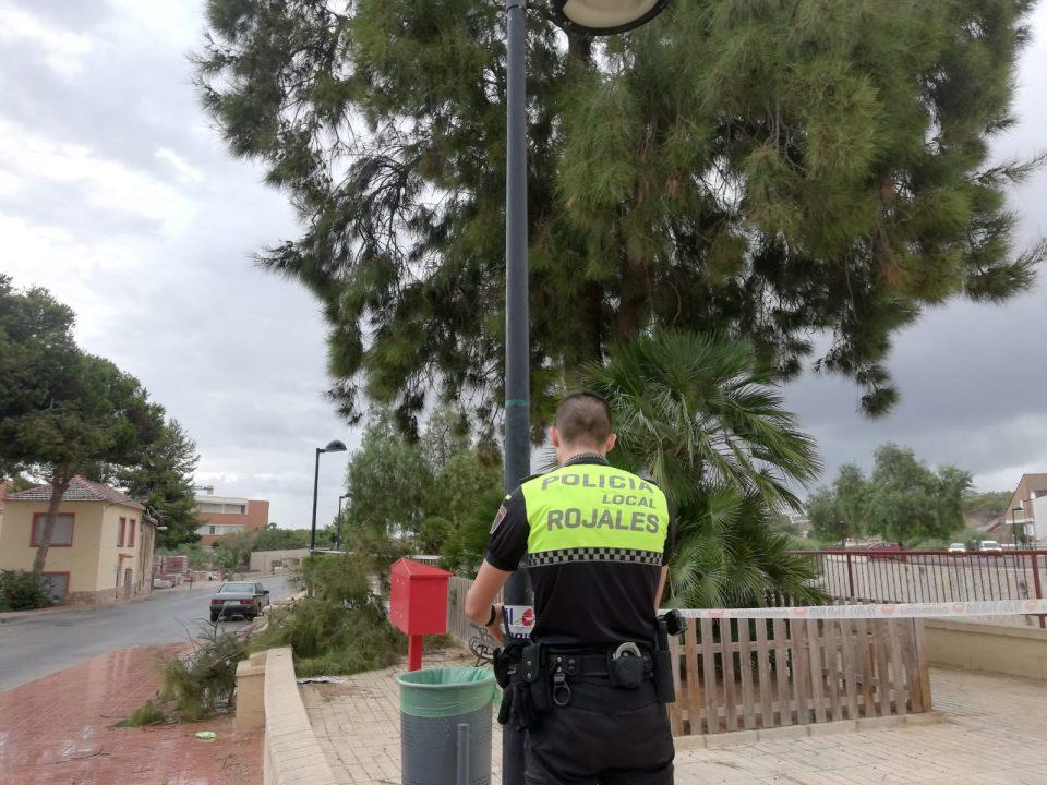 El viento y la lluvia provocan daños en Rojales 6