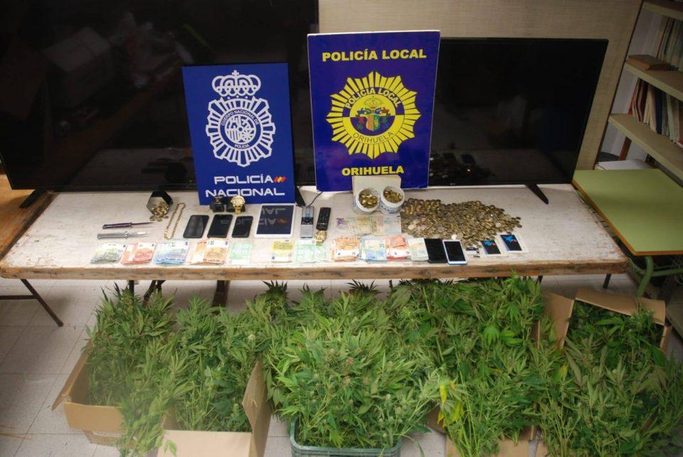 Cinco detenidos por una plantación de marihuana en El Rabaloche 6
