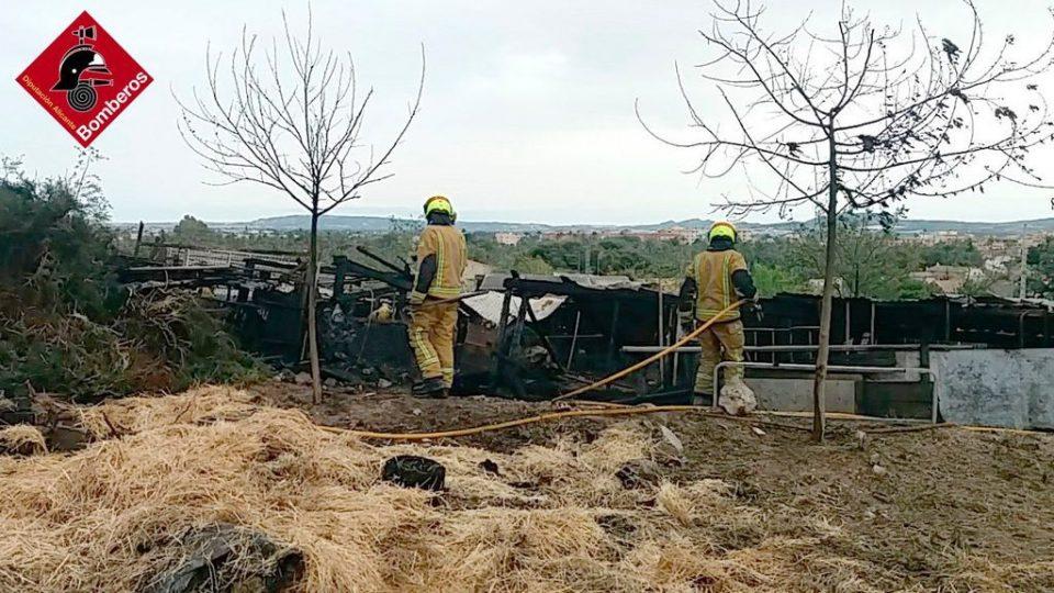 Incendio de una cuadra de animales en Orihuela 6