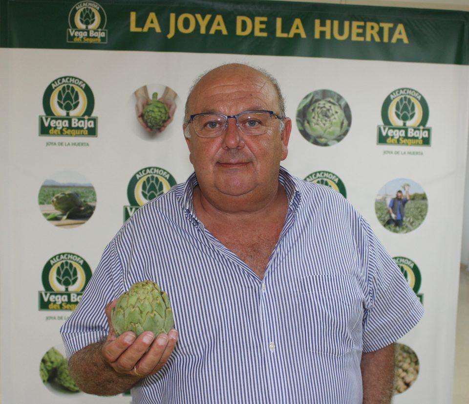 Antonio Ángel Hurtado, nuevo presidente de la Asociación Alcachofa de la Vega Baja del Segura 6