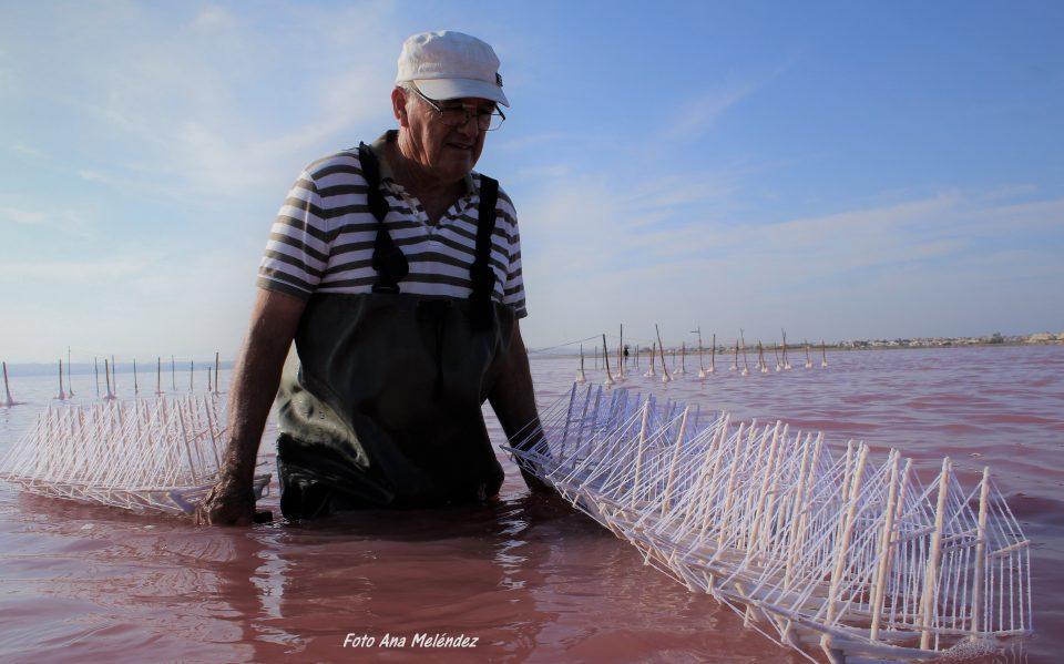 """Torrevieja estrena el corto documental """"Artesanos de la Sal"""" 6"""