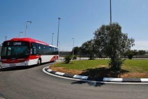 Nueva parada de autobús en la entrada al mercadillo semanal de Torrevieja 7