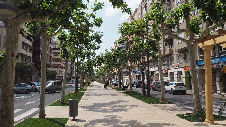 El Ayuntamiento de Orihuela peatonaliza la Avenida Teodomiro 6