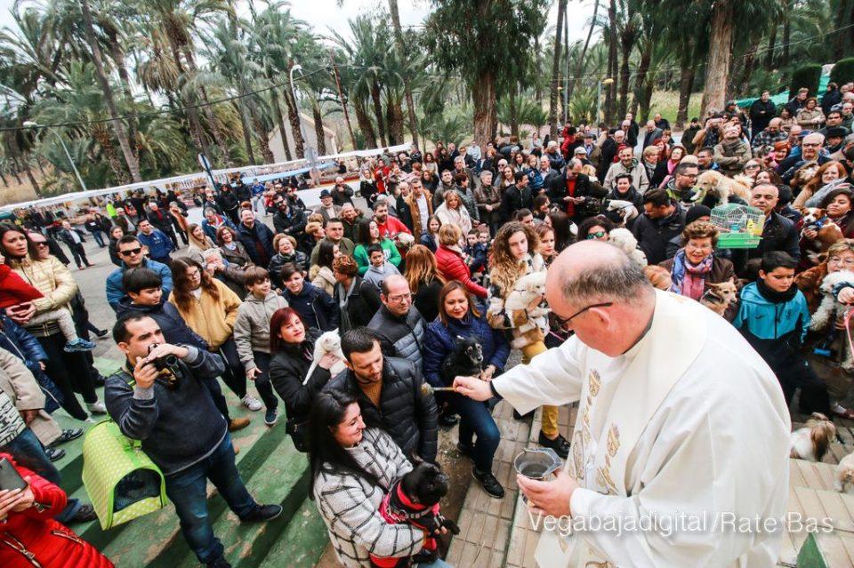 Disfrute en fotografías la fiesta de San Antón en Orihuela 6
