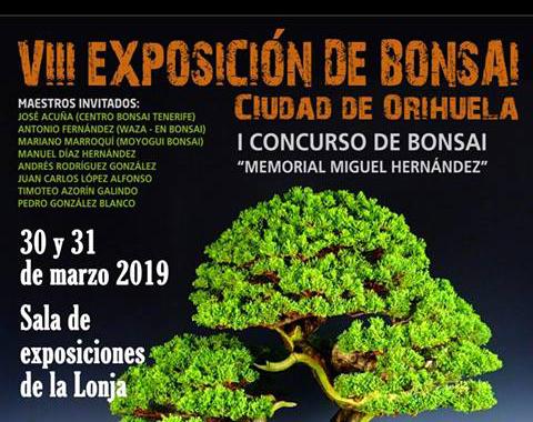 """Impulsan el I Concurso de Bonsái """"Memorial Miguel Hernández"""" 6"""