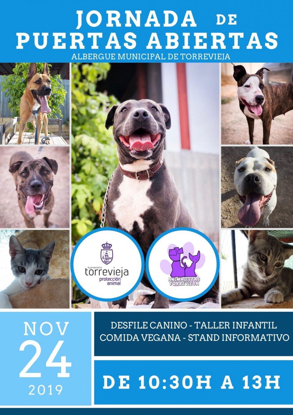 Jornada de puertas abiertas en el albergue municipal de animales de Torrevieja 6