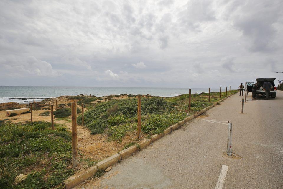 Delimitan los recorridos peatonales en Cabo Cervera para proteger la vegetación y flora 6