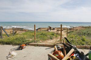 Delimitan los recorridos peatonales en Cabo Cervera para proteger la vegetación y flora 7
