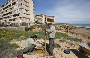 Delimitan los recorridos peatonales en Cabo Cervera para proteger la vegetación y flora 8