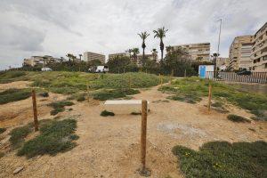 Delimitan los recorridos peatonales en Cabo Cervera para proteger la vegetación y flora 10