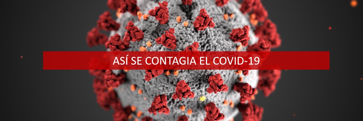 Así se contagia el coronavirus 11