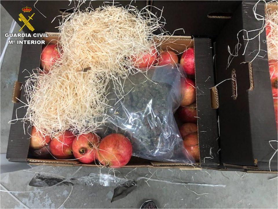 Cinco detenidos en la Vega Baja por el transporte de marihuana en cajas de frutas hasta Holanda 6