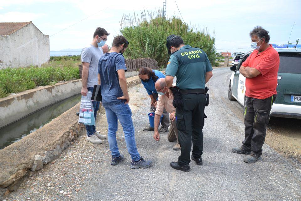 Rojales y Guardamar denuncian vertidos de aguas azuladas en sus sistemas de riego 6