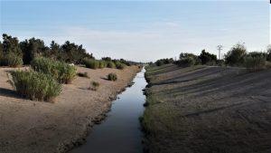 La CHS realiza labores de mantenimiento del río en Benejúzar 9