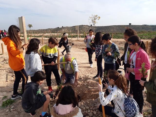 Escolares de Bigastro reforestan el Mirador de la Ruta Alquibla 6