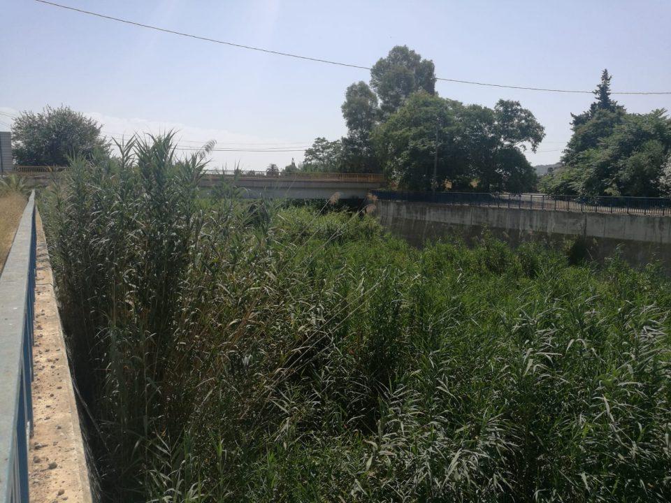 El PP de Benejúzar denuncia la suciedad del Segura a la Confederación Hidrográfica 6