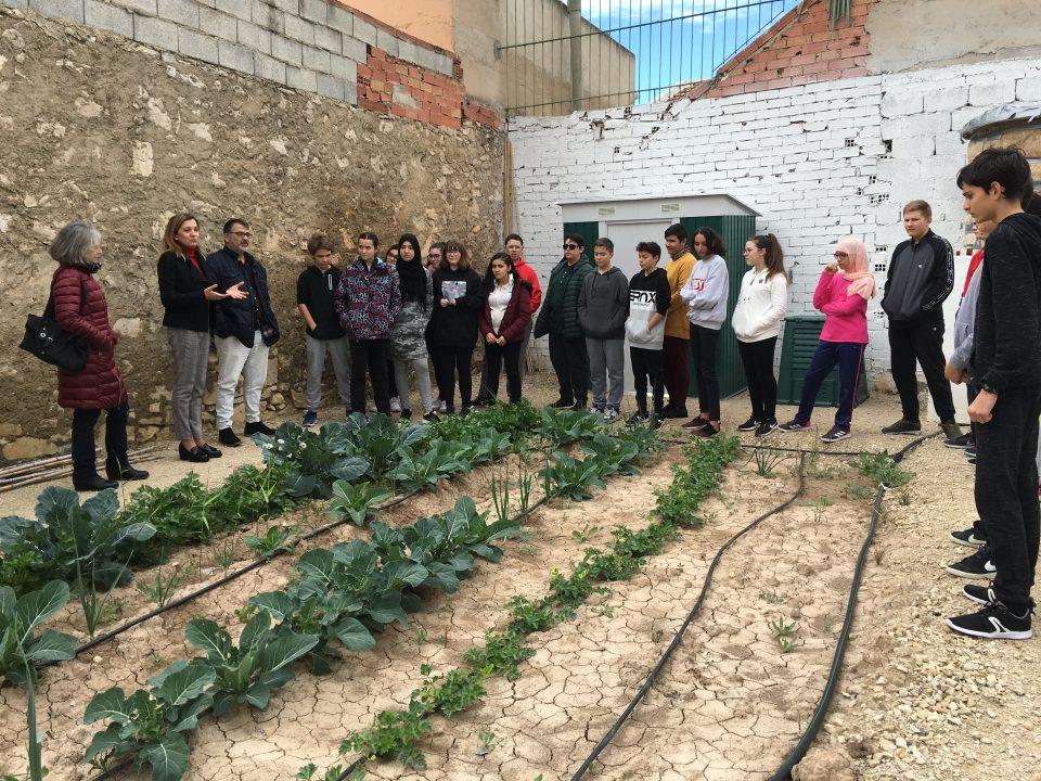 Almoradí abre las puertas de los huertos urbanos a escolares 6