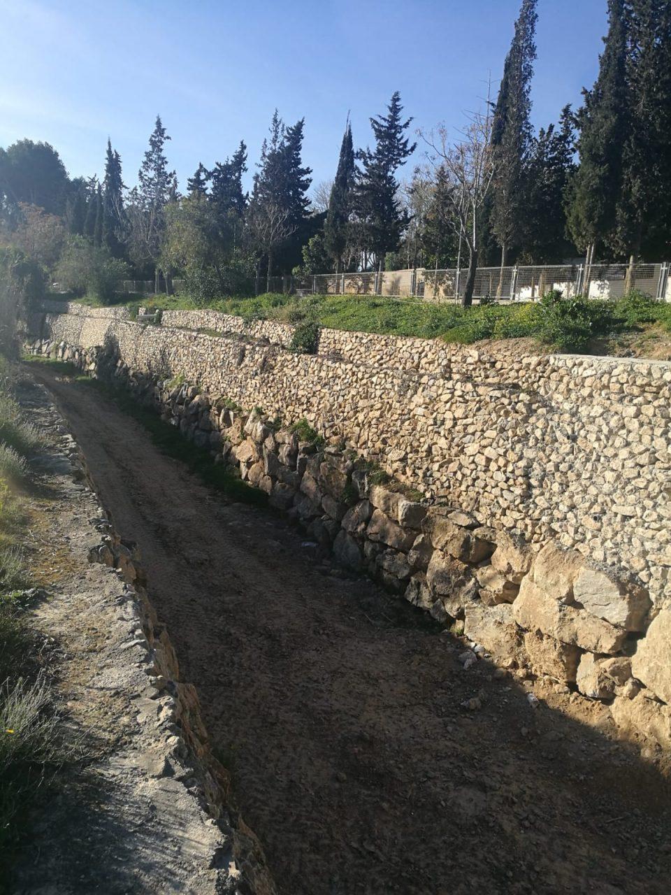 La CHS actúa sobre el río Segura a su paso por Benejúzar 6