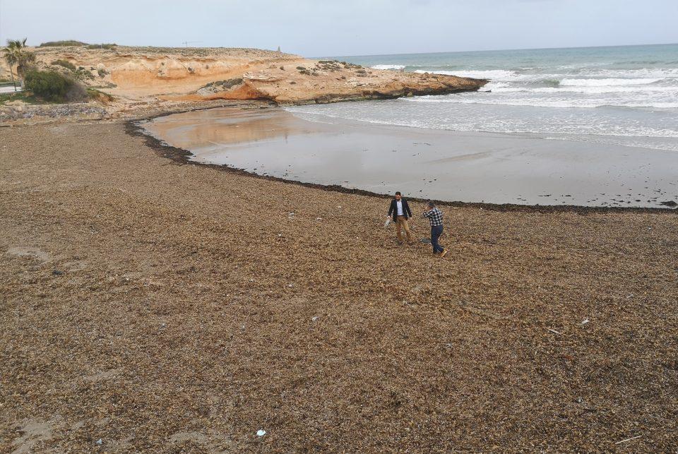 Comienzan dos campañas para la recogida de plásticos en las playas de Orihuela Costa 6